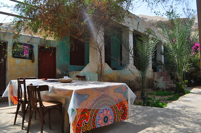Care to dine at this quaint villa on the outskirts of Cairo in a village with horses in the streets instead of cars. The Magical House Air BnB located under the Great Pyramid where I've spent 5 magical days. Only $18/night.