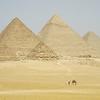 Sheer grandeur of Egypt.
