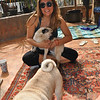 Chloe and her beloved pugs, Candy and Chiquita.