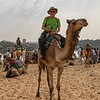 Didn't know what to think when the camel driver gave me the reins and disappeared behind me.  He  encouraged my ride along.  I was a bit nervous when we walked past any rocks.  Not a good time to fall off.