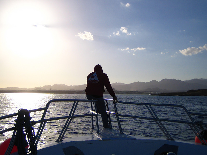 I headed to the Sharm el Sheikh on the Sinai Peninsula to scuba dive the Red Sea.