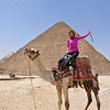 Enjoying the motorcycle of ancient times in Egypt, the beautiful camel.
