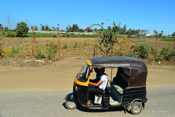 Giza - the view from the bus.