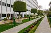 An outdoor garden at the Sheraton Heliopolis Hotel in Cairo, Egypt.