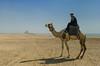 Desert landscape with camel and rider near Dashur, Egypt.