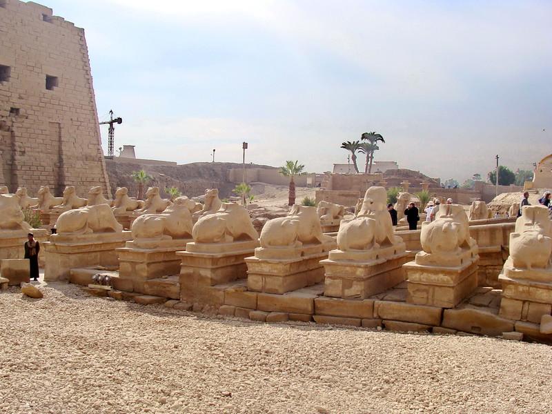 Ram-headed Sphinxes