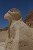 Falcon God Horus at Hatshepsut's Temple, Valley of the Kings, Upper Egypt