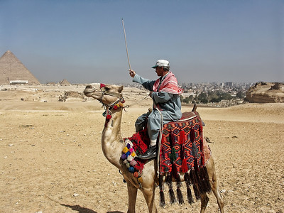 Patroling the pyramids with camel