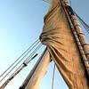 Sail on the Nile I