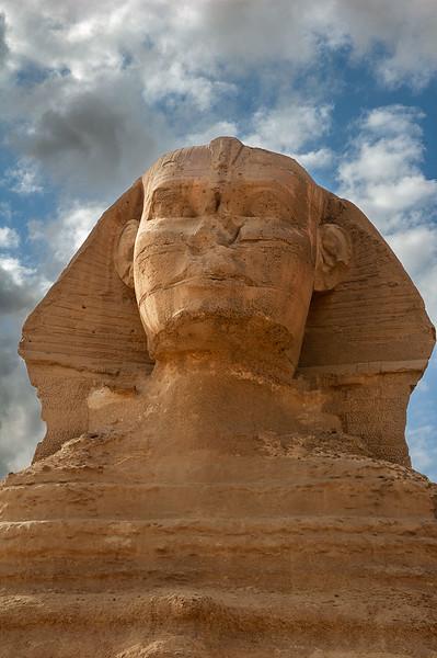 Sphinx. Head Detail