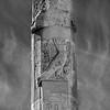 Hatshepsut Temple. Relief of Horus