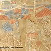 Painting of the protective wings of a vulture symbolising protection of the queen in the  mortuary temple of Queen Hatshepsut at Thebes in Egypt