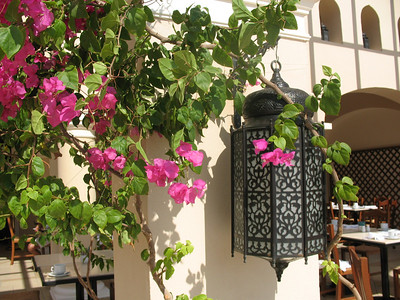 Lantern outside the Al-Zeytoun Restaurant in the Jaz Mirabel Beach Resort