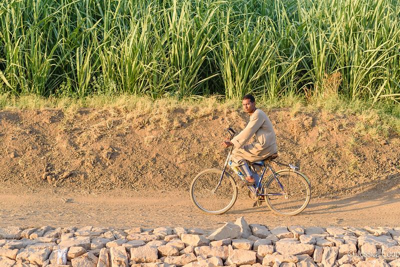 Riding Along the Nile