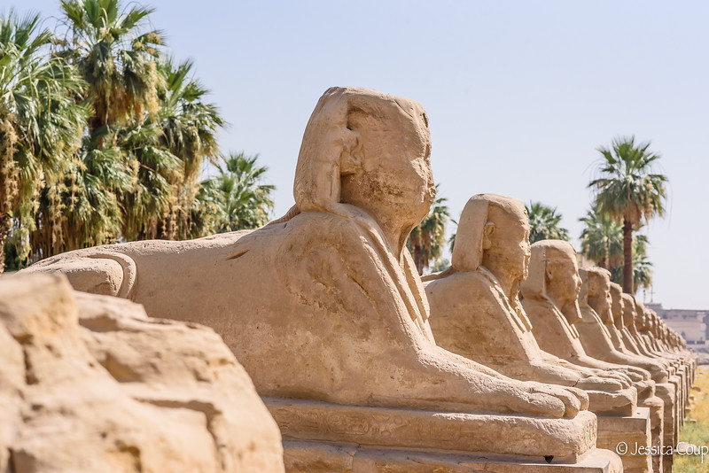 Street Lined of Sphinxes