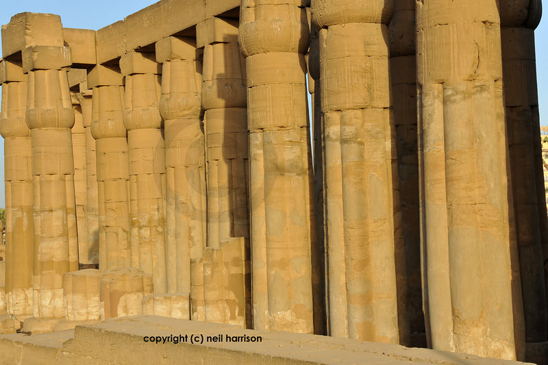Massive closed lotus columns at the 3000 year old Luxor Temple in Egypt