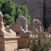 Alley of Sphinxes in Karnak Temple