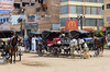 Horse and carriage on the street in Luxor, Egypt.