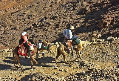 mount-sinai-camel-hike-5
