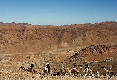 mount-sinai-camel-hike-6