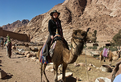 mount-sinai-camel-ride-2