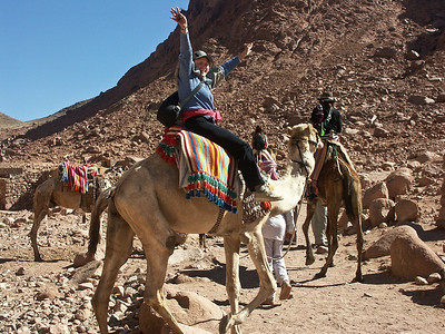 mount-sinai-camel-ride