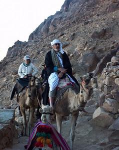 mount-sinai-camel-hike-9