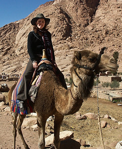 mount-sinai-camel-ride-2-2