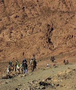 mount-sinai-camel-hike-3