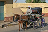 Horse & Buggy Ride to Edfu Temple