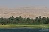 Nile Contrast