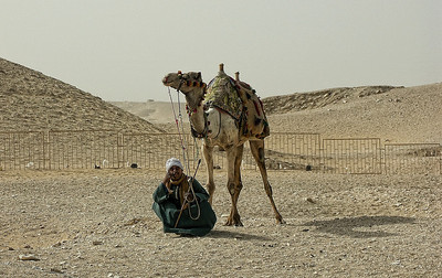 egypt-man-camel
