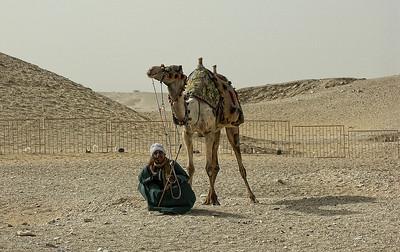 egypt-man-camel