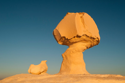 Chicken & Mushroom Rock, White Desert