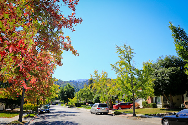 149 Forest Hill Drive, Los Gatos   MLS