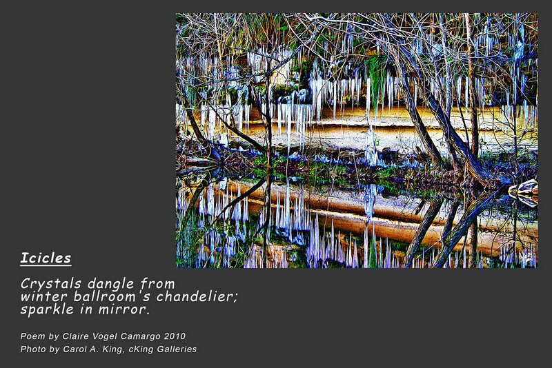 """Photo without poem for sale at:<br />  <a href=""""http://ckinggalleries.smugmug.com/Watery/Wetlands/12363004_W64cK#883518123_nz89H"""">http://ckinggalleries.smugmug.com/Watery/Wetlands/12363004_W64cK#883518123_nz89H</a>"""