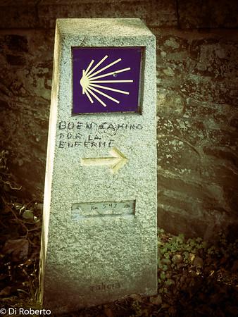 Mark for El Camino