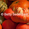 Gourds from Apple Hill