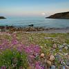 Bolnuevo- La Isleta II