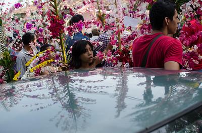 El Salvador Flower and Palm Festival