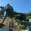 Montecito St Stairs