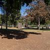 Lincoln Park-9