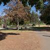 Lincoln Park-10