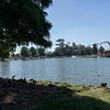 Lincoln Park-18