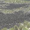 Sandstone Bluffs Overlook (4)