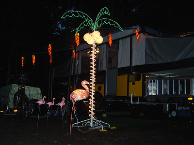 Now we have the full set up - Chilli lites, Flamingos, Palm tree with coconuts.