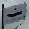 May 9, 2016 - Battle of Gonzales Flag