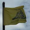 May 14, 2016 - Gadsden Flag