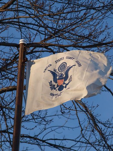 January 28, 1915 -- U.S. Coast Guard Flag