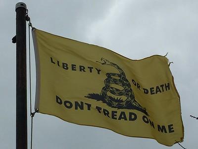February 3, 1913 - Gadsden Flag